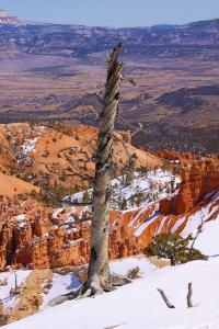 New Images From Bryce Canyon